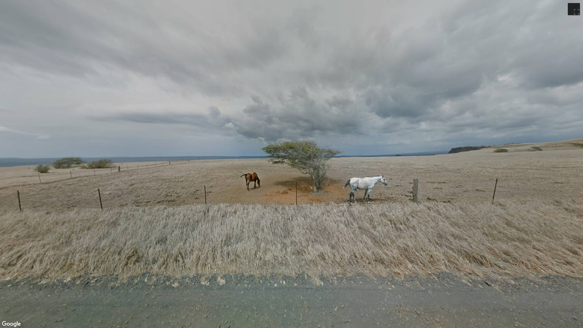 Instant Google Street View on